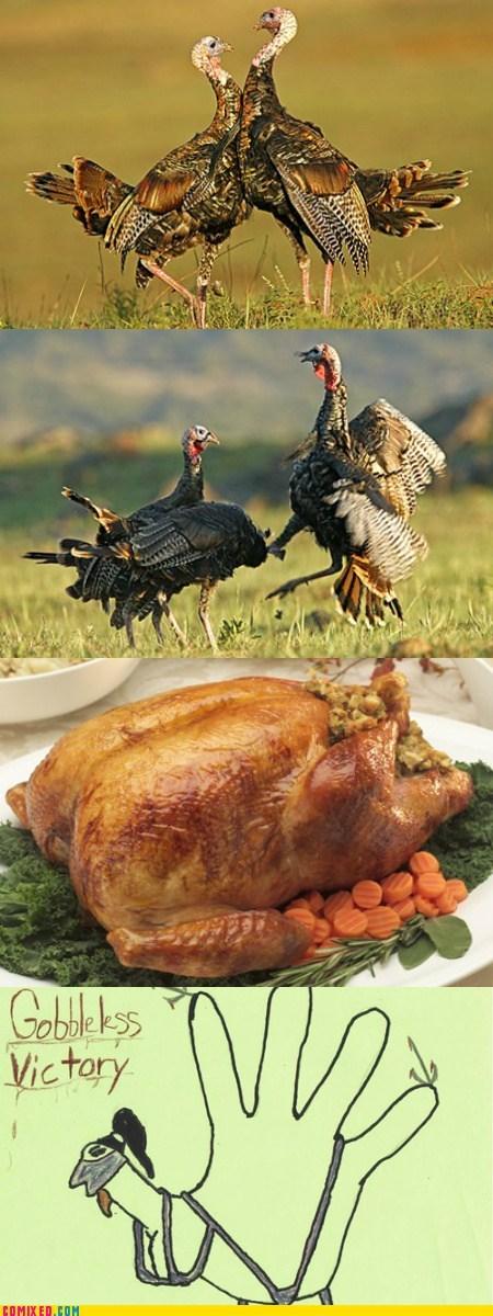 a memebase thanksgiving animals bird Mortal Kombat - 5473769728