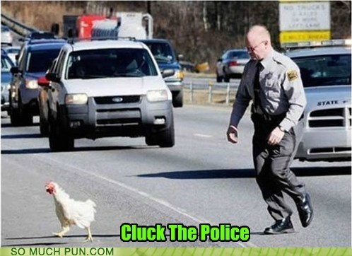 chicken,cluck,cop,f the police,Hall of Fame,pejorative,police officer,running,similar sounding