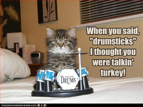 birds,caption,captioned,Cats,drums,drumset,drumsticks,food,misunderstanding,Turkey