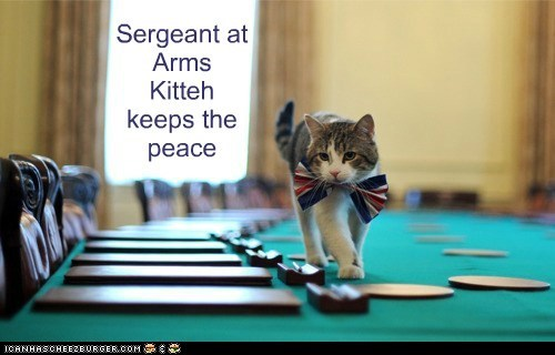 Sergeant at Arms Kitteh keeps the peace