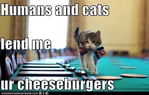 Cheezburger Image 5474917888