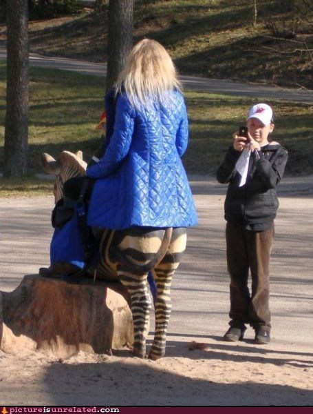 sarah jessica parker,wtf,zebra