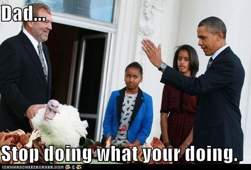 barack obama political pictures turkey pardon - 5478469376