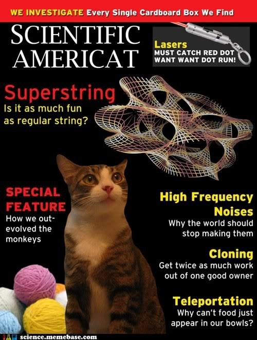 Cats experiment magazine photoshop science - 5479701504