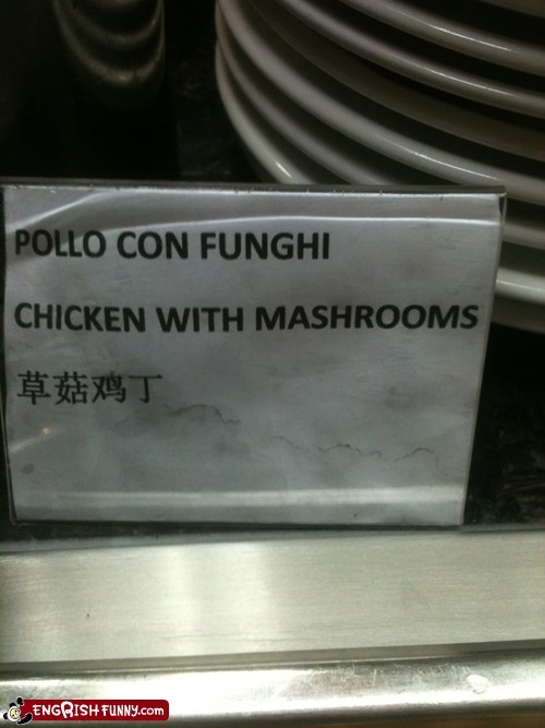 mashrooms not appetizing white fungus