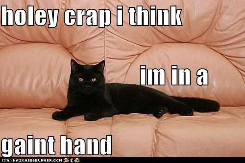 caption,captioned,cat,color,confused,crap,drugs,giant,hand,holy,is this real life,resemblance,sofa
