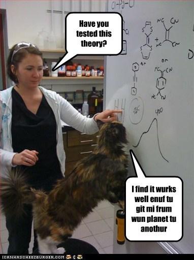 cat human I Can Has Cheezburger science smart theory - 5481048064