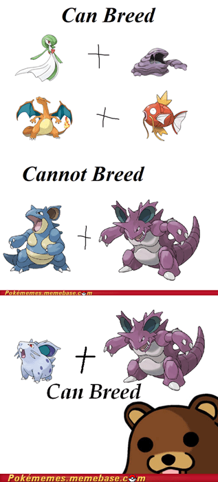 breeding,can breed,daycare,Memes,nidoran,pedo bear