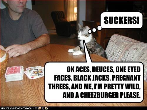 Cheezburger Image 5481600000