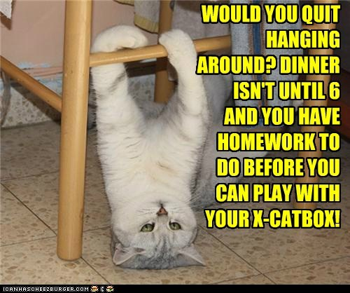 WOULD YOU QUIT HANGING AROUND? DINNER ISN'T UNTIL 6 AND YOU HAVE HOMEWORK TO DO BEFORE YOU CAN PLAY WITH YOUR X-CATBOX!