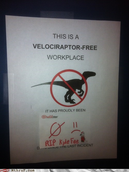 dinosaurs,no longer incident free,raptors,velociraptor