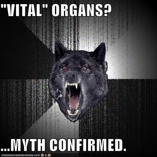 Insanity Wolf mythbusters organs - 5484104960