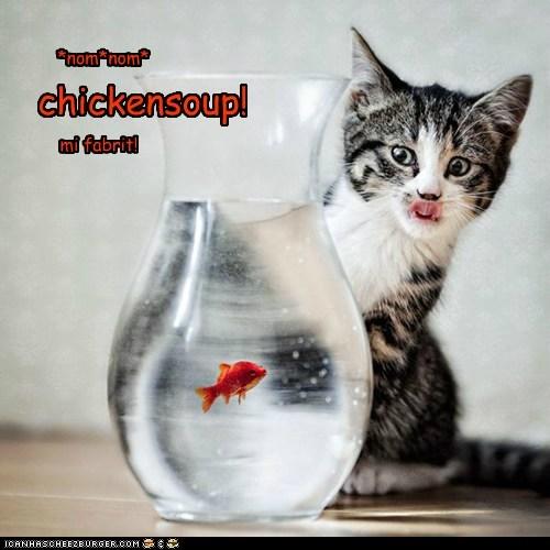 Cheezburger Image 5484115456