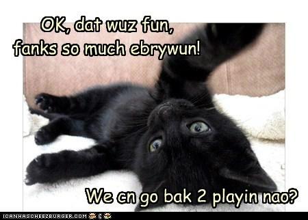 OK, dat wuz fun, fanks so much ebrywun! We cn go bak 2 playin nao?