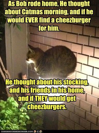 Cheezburger Image 5485055488