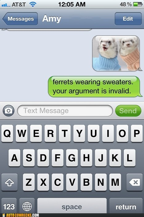 ferrets,ferrets wearing sweaters,sweaters,your argument is invalid