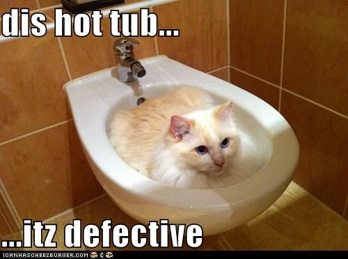 cat defective hot tub I Can Has Cheezburger if i fits in it i sits in it toilet - 5485811968