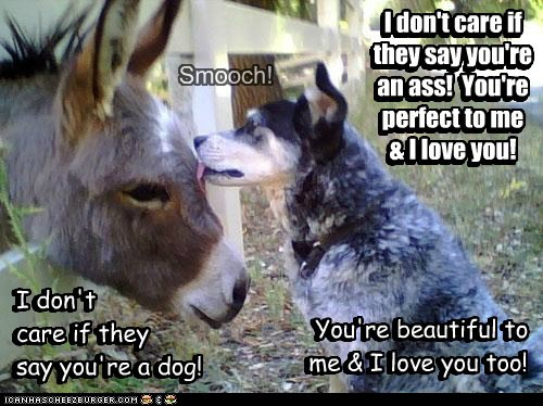 I don't care if they say you're an ass! You're perfect to me & I love you! You're beautiful to me & I love you too! Smooch! I don't care if they say you're an ass! You're perfect to me & I love you! I don't care if they say you're a dog! You're beautiful to me & I love you too! I don't care if they say you're a dog!