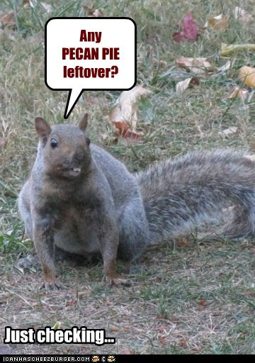 Any PECAN PIE leftover? Just checking...