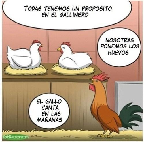 grifo gallina