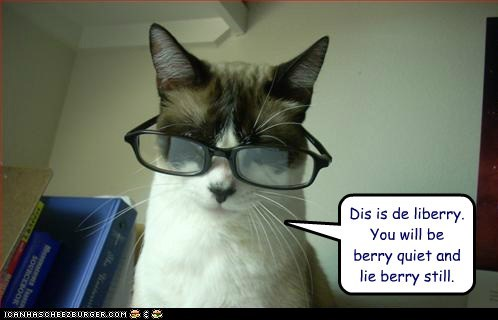 caption,captioned,cat,Command,glasses,instructions,librarian,library,lie,pun,quiet,still,this,very