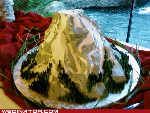 beer cakes funny wedding photos moun rainier seattle twilight Washington state wedding cake - 5489799168