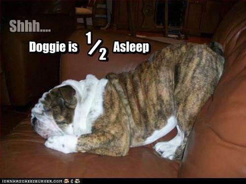 Doggie is Asleep 1 / 2 2 / 1 Doggie is Asleep Shhh....