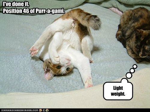I've done it. Position 46 of Purr-a-gami. Light weight.
