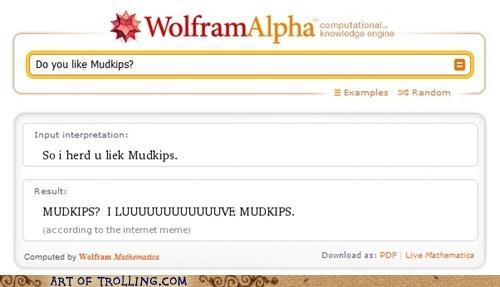 mudkips,old memes,wolfram alpha
