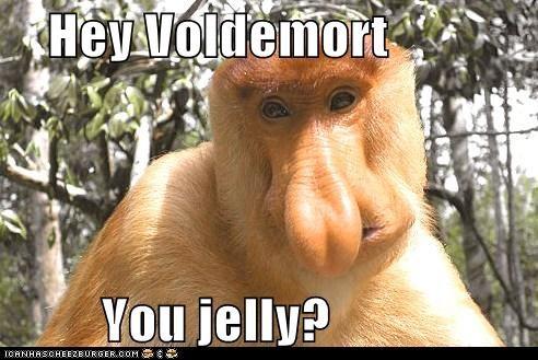 animals Harry Potter monkey nose voldemort - 5491769856