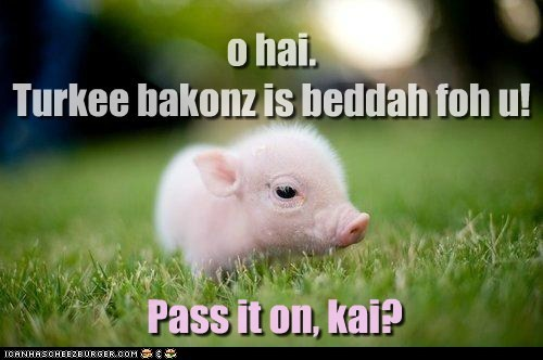 animals,bacon,pass it on,pig,piglet,spread the word,turkey bacon