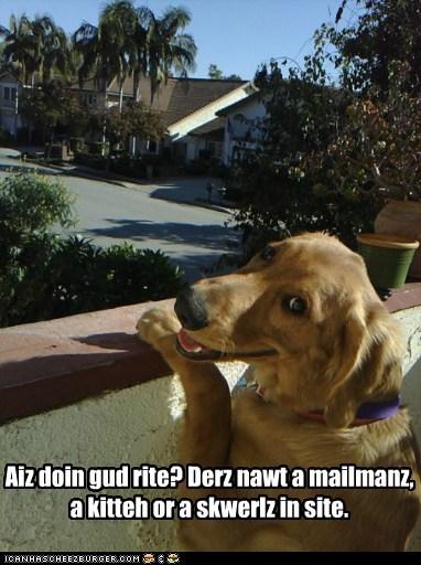 Cheezburger Image 5491820544