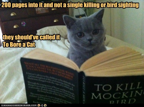 200,alternate,bird,book,bore,bored,caption,captioned,cat,in,killing,not,novel,pages,reading,sighting,single,suggestion,title,To Kill A Mockingbird