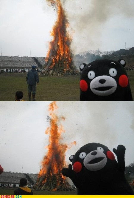 fire kumamon mascot meme some men just want to watch the world burn the internets - 5492379904