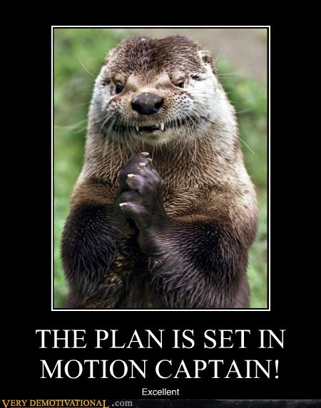 captain,hilarious,otter,plan,plotting