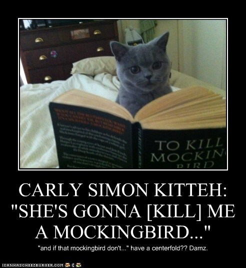 """CARLY SIMON KITTEH: """"SHE'S GONNA [KILL] ME A MOCKINGBIRD..."""" """"and if that mockingbird don't..."""" have a centerfold?? Damz."""