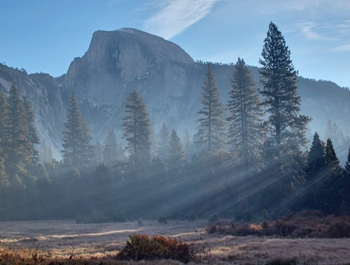 california destination of the week first class ticket fog getaways half dome north america trees united states Yosemite national park - 5492792832