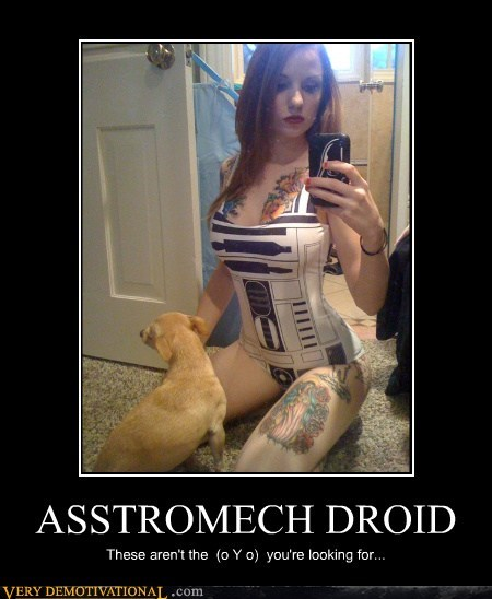 ASSTROMECH DROID These aren't the (o Y o) you're looking for...