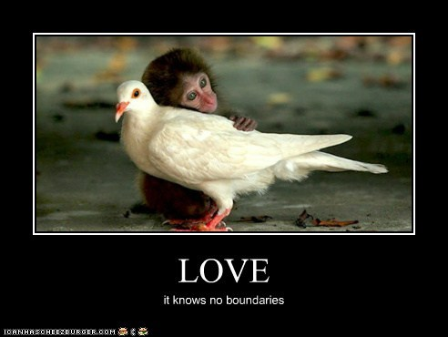 LOVE it knows no boundaries