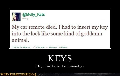 animals car hilarious keys tweet - 5495149824