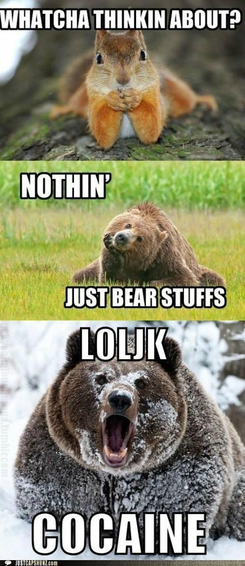 WHATCHA THINKIN ABOUT? -NOTHIN' JUST BEAR STUFFS LOLJK COCAINE