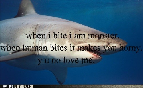 animals,bit,bite,biting,great while shark,Sad,sad shark,shark,teeth,Y U NO,y u no love me