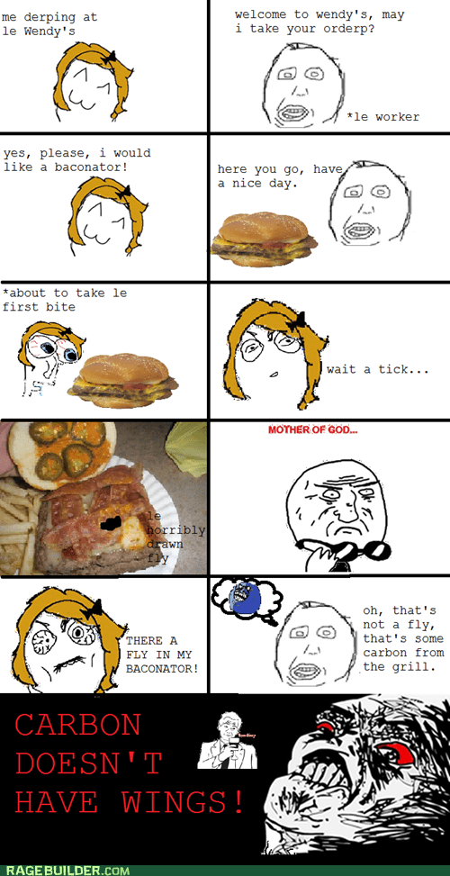 carbon fly food gross Rage Comics