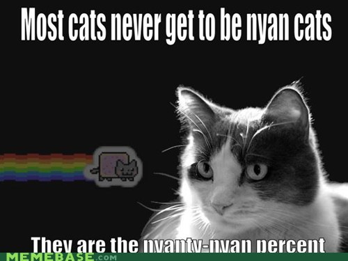 We are the nyanty nyan percent