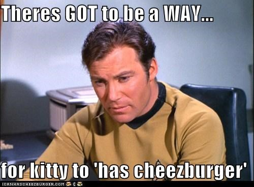 Captain Kirk Cats cheezburger I Can Has Cheezburger kitty Shatnerday Star Trek William Shatner