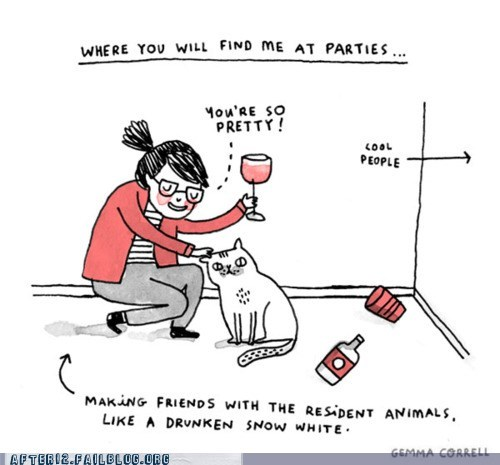 Cats Are More Interesting Than Drunk People