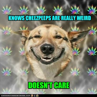 KNOWS CHEEZPEEPS ARE REALLY WEIRD DOESN'T CARE