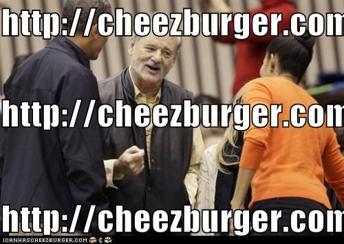 Cheezburger Image 5499361536