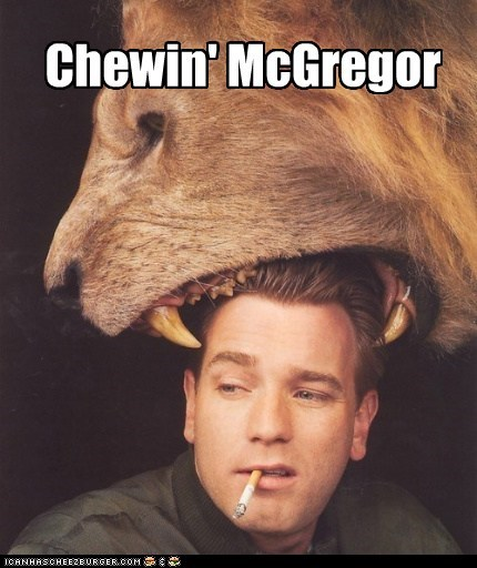 animals,chewing,ewan mcgregor,Hall of Fame,ICWUDT,lions,puns,smoking