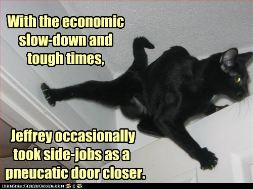 caption captioned cat closer closing door economic job pneumatic pun times tough - 5500009472